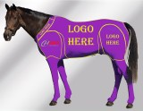 EQUINE CUSTOMISED SUIT PURPLE