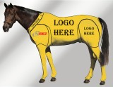 EQUINE CUSTOMISED SUIT YELLOW