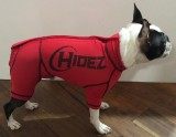 CANINE COMPRESSION ANXIETY SUIT RED