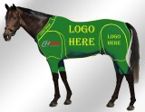 EQUINE ACTIVE CUSTOMISED SUIT GREEN