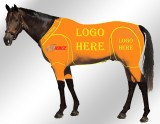 EQUINE ACTIVE CUSTOMISED SUIT ORANGE