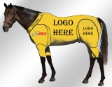 EQUINE ACTIVE CUSTOMISED SUIT YELLOW
