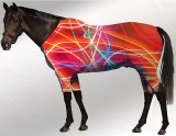 EQUINE ACTIVE  SUIT PRINTED NEON LIGHTS