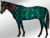 EQUINE ACTIVE  SUIT PRINTED NEON SQUARES