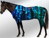 EQUINE ACTIVE  SUIT PRINTED NIGHT ROCKS