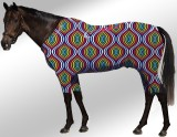 EQUINE ACTIVE  SUIT PRINTED SEAMLESS