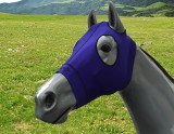 EQUINE COMPRESSION HOOD PURPLE