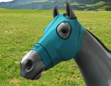 EQUINE COMPRESSION HOOD TURQUOISE