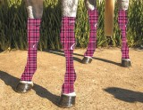 EQUINE COMPRESSION SOCK PRINTED TARTAN PINK