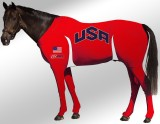 EQUINE SUIT PRINTED USA