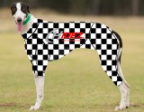 RACING-SUIT-PRINTED-CHECKERED