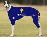 RACING-SUIT-PRINTED-FRANCE